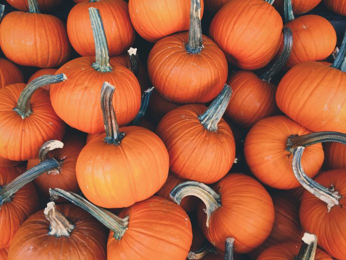 Things About Fall That Will Make You Smile